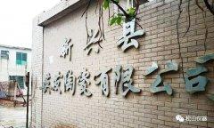 DHF82多元素快速ballbet应用---广东新兴县